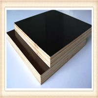 Price for Melamine 18mm film faced plywood manufacturers