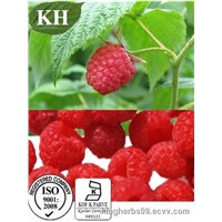 Natural Rasberry Extract Ellagic acid CAS:476-66-4
