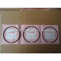 Sinotruk Spare Parts HOWO Truck Parts Engine Piston Ring