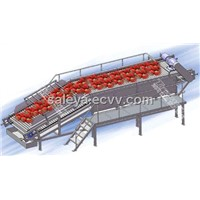fruit processing line