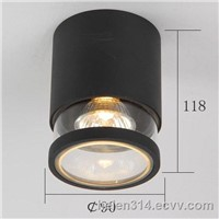 outdoor aluminum waterproof ceiling light/lamp(BO-C3012)