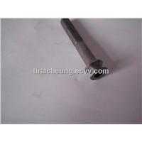 stainless steel non-standard bolts cold forming fasteners
