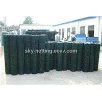 Anping Holland Fencing for European Market (Professional Factory)