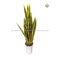 Artificial plants Sansevieria or snake plant