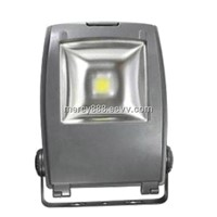 Flood light COB LED RGB