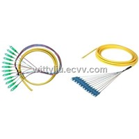Multi-fiber Cable Assembly
