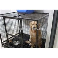 Wire Mesh Dog Cage (Anping Factory)