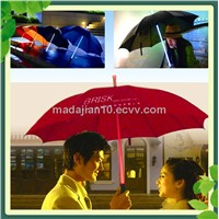 beautiful umbrella  with LED lighting