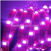 LED UV Wavelength Strip Light