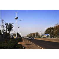 50W wind solar hybrid street light