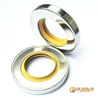 Double lip PTFE pump mechanical seals