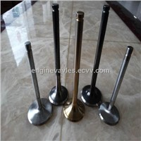 Engine Valves for Car