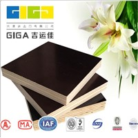 GIGA 18mm marine plywood/black film faced plywood manufacturer