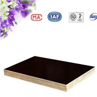 WBP faced hot press waterproof plywood