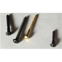 Black Japanned Pozidrive brass copper Screw