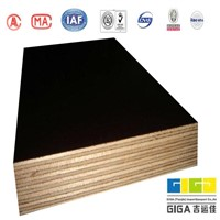 china 4*8 foot poplar fancy  building plywood