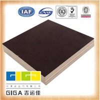 marine plywood manufacturer, film faced plywood sheet