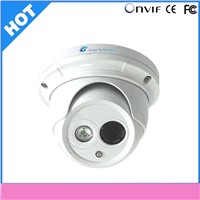 2013 Hot 21 Languages Supported Metal-Housing  Dome IP Camera