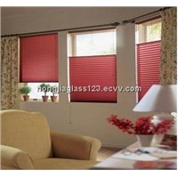 blind insulated glass