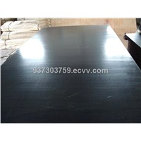exported black and brown film faced plywood
