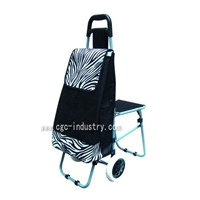 shopping trolley with chair