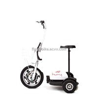 Electric Standing-Up Trike Scooter/Electric Tricycle Scooter/Electric Patrol Scooter