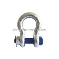 Bolt Pin Anchor Shackle (T8)