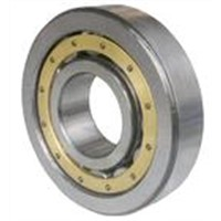 NSK Nu318W Cylindrical Roller Bearings (NU310W, NU318M)