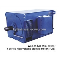 Y Series HV Squirrel Cage Motor