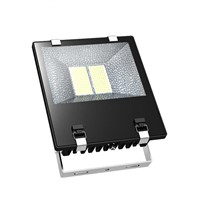 meanwell power supply, 200W ,4000~4500K ,CREE-XBD LED,18000~19000LM,LED flood light