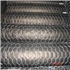 Stainless Steel hexagonal wire net mesh made in anping