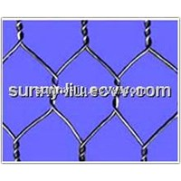 Galvanzied Hexagonal wire netting mesh/Chicken wire