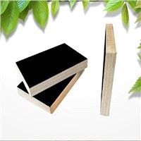 17mm black film faced plywood