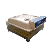 CE Certified Automatic Quail Incubator for 48 Eggs