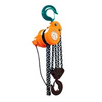 DHP electric hoist
