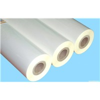Good quality PET coated paper