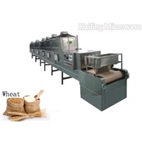 Microwave drying machine for wheat