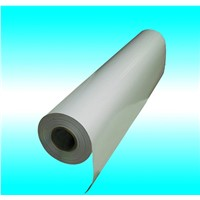 PET coated paper