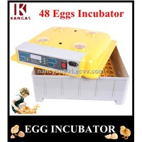 Wholesale Price Mini Egg Incubator 48 Eggs Incubator