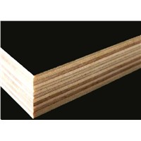 arine Film Faced Plywood/Shuttering Exterior Plywood/Construction Plywood