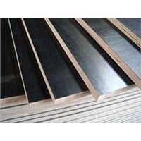 concrete plywood for construction/hot pressed plywood/waterproof laminate plywood