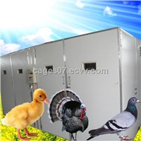 poultry egg incubators prices/chicken egg incubator