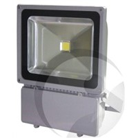 100W Outdoor LED Floodlight, Project Light