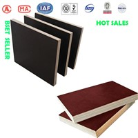 1220*2440 High quality melamine buiding template