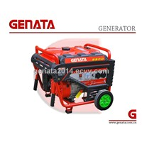 2014 New Portable Power Gasoline Generator (GR5500CN)