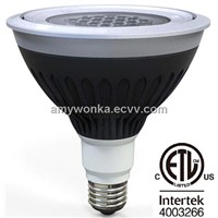 25W 2200lm LED IP67 PAR38 for Outdoor Lighting