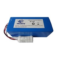 36V 10ah Lithium Polymer Battery E-Bike Battery Pack CE and RoHS