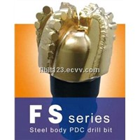 China PDC bit for oil drilling,well drilling