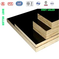 China melamine kindly prices for construction plywood