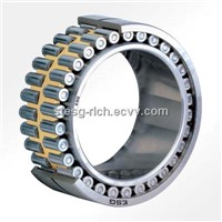 Double-row Cylindrical Roller Bearing NNU4920